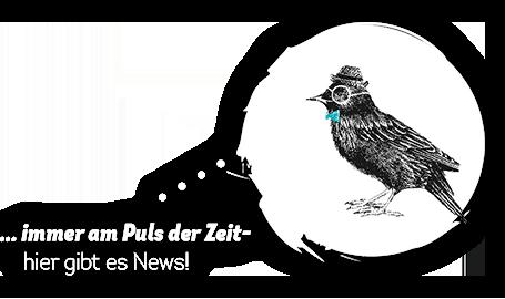 Nekowitsch Button News