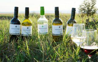 Fünf Nekowitsch Weinflaschen und zwei Weingläser stehen auf einer Wiese